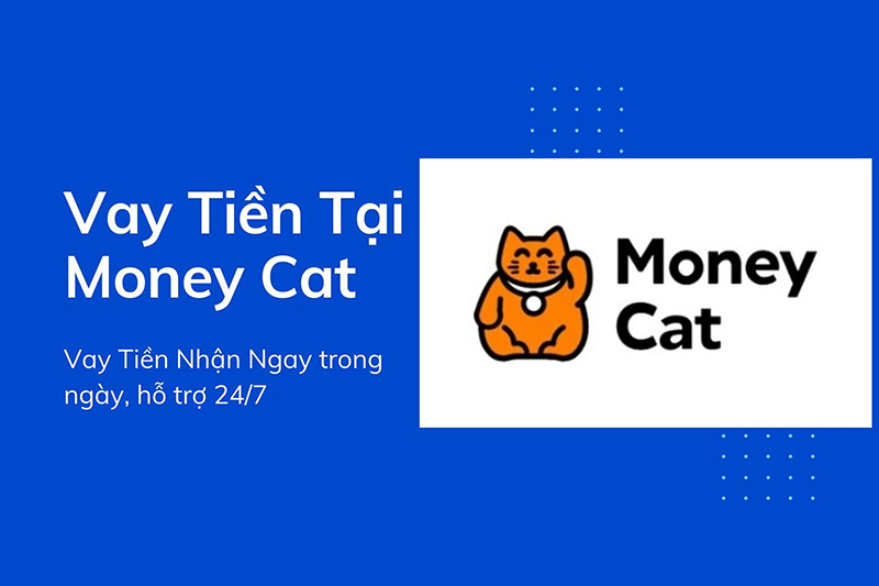 Vay tiền App/Web thủ tục online lãi suất minh bạch, nhận tiền ngay